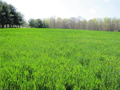Iredell County Residential Lots & Land For Sale: 00 Bell Farm Road