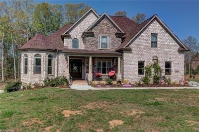 Davidson County Single Family Home For Sale: 486 Kapstone Crossing