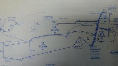 Residential Lots & Land For Sale: Cox Mill Road