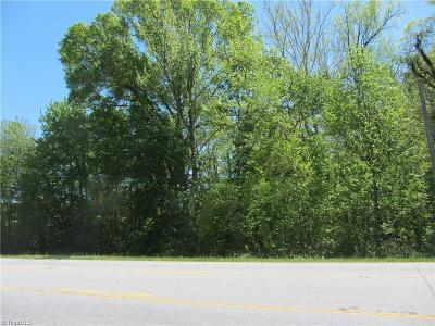 Mayodan Residential Lots & Land For Sale: 00 Nc Highway 135