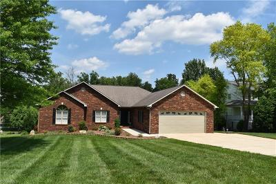 Statesville Single Family Home For Sale: 130 Dobbs Drive