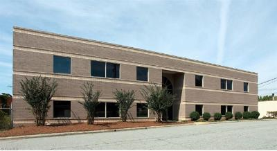 Greensboro Commercial For Sale: 813-825 Winston Street