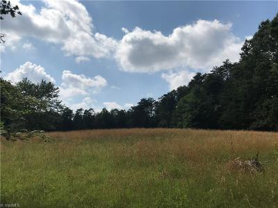 Rockingham County Residential Lots & Land For Sale: 1030 Nc Highway 68