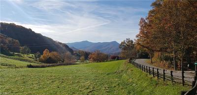 Waynesville NC Single Family Home For Sale: $2,475,000