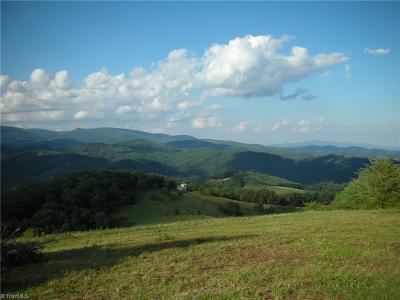 Ashe County Residential Lots & Land For Sale: 2245 Little Windfall Road