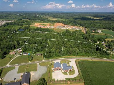 Mebane NC Residential Lots & Land For Sale: $5,000,000