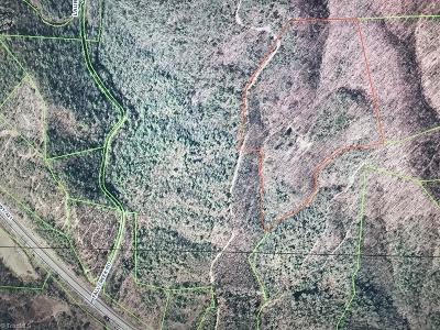 Wilkes County Residential Lots & Land For Sale: Us Highway 421