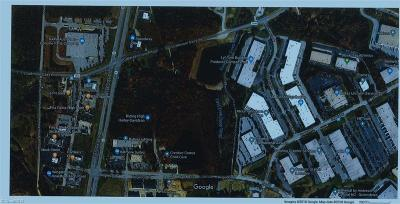 Guilford County Commercial Lots & Land For Sale: 517 & 515 W Gallimore Dairy Road E