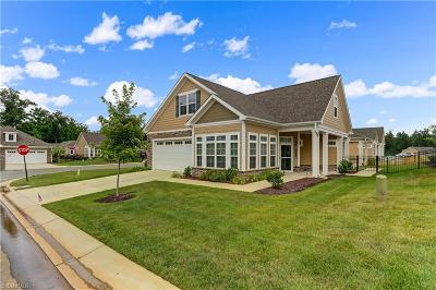Gibsonville Single Family Home For Sale: 1319 Brookview Drive