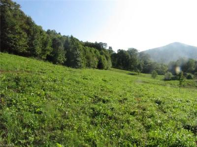 Ashe County Residential Lots & Land For Sale: Mill Creek