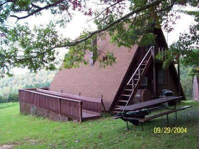 Ashe County Single Family Home For Sale: 187 Maines Hill Lane