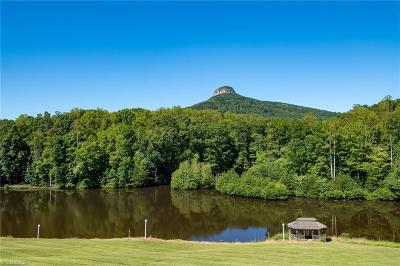 Single Family Home For Sale: 271 Scenic Overlook Lane