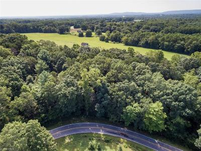 Surry County Residential Lots & Land For Sale: Tbd C Klondike Road Extension