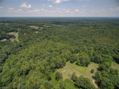 Summerfield NC Residential Lots & Land For Sale: $2,500,000