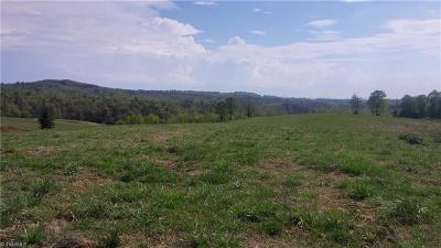 Traphill NC Residential Lots & Land For Sale: $750,000