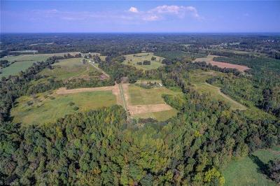 Caswell County Residential Lots & Land For Sale: 447 Isaiah Walker Road