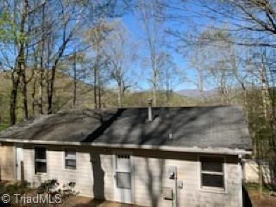 Ashe County Single Family Home For Sale: 233 Canon Lane