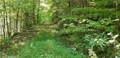 Caldwell County Residential Lots & Land For Sale: Off Waterfalls Road