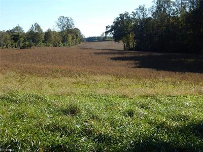 Yadkin County Residential Lots & Land For Sale: 2824 Dobbins Road