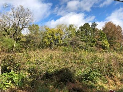 Winston Salem Residential Lots & Land For Sale: 00 Midway School Road