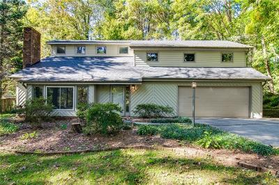 Kernersville Single Family Home For Sale: 434 Valleymeade Drive