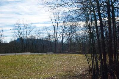 Surry County Residential Lots & Land For Sale: Old Hollow Road