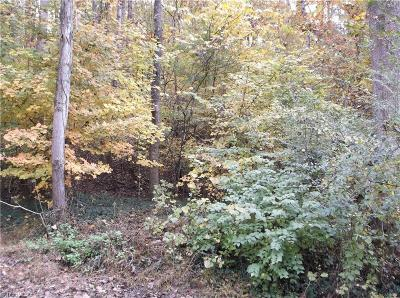 Surry County Residential Lots & Land For Sale: Tbd Green Valley Road