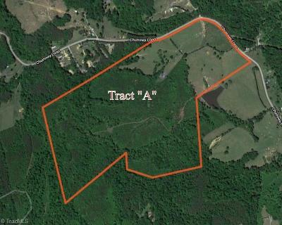 Rockingham County Residential Lots & Land For Sale: Tract