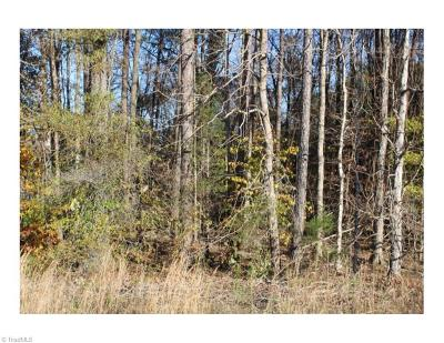 Alamance County Residential Lots & Land For Sale: 2248 S Nc Highway 87