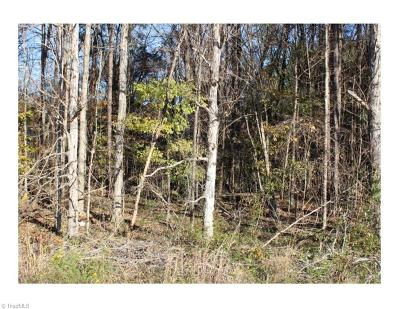 Alamance County Residential Lots & Land For Sale: 2256 S Nc Highway 87