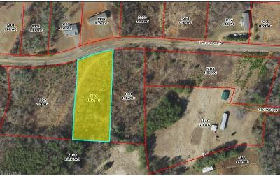 Surry County Residential Lots & Land For Sale: Lot 19 Hunter Ridge Lane