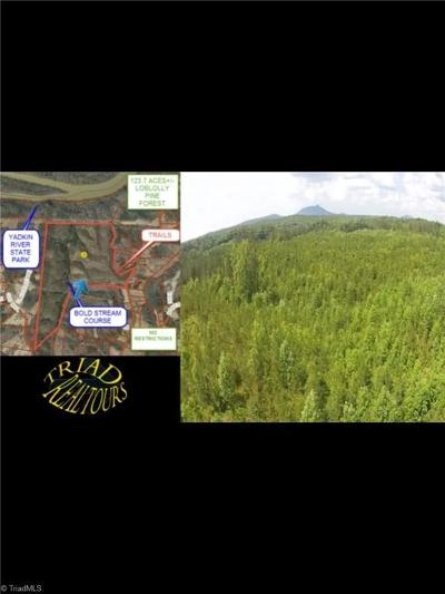 Yadkin County Residential Lots & Land For Sale: 00 Union Hill Road
