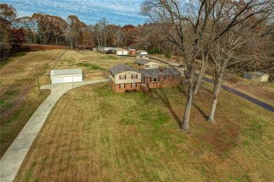 Browns Summit Single Family Home For Sale: 1217 Kalon Drive