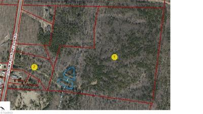 Alamance County Residential Lots & Land For Sale: 5286 Thompson Mill Road