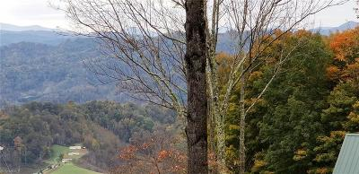 Watauga County Residential Lots & Land For Sale: 0000 Harley Perry Road