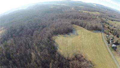 Surry County Residential Lots & Land For Sale: 9891 Nc 268