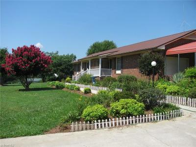 Alamance County Single Family Home For Sale: 3907 Bass Mountain Road