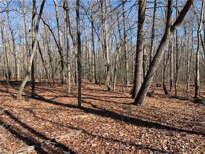 Surry County Residential Lots & Land For Sale: 358 Mount Pleasant Church Road