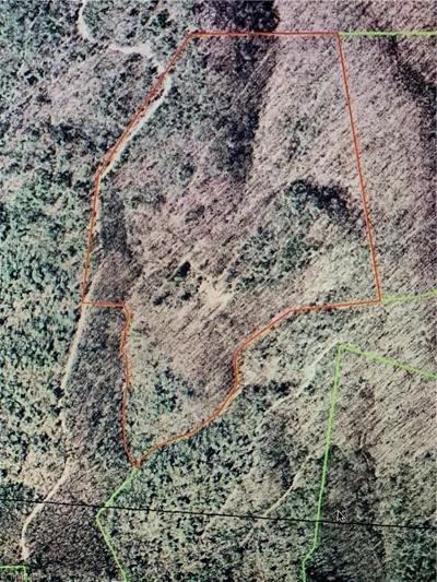 Wilkes County Residential Lots & Land For Sale: W Us Highway 421 N