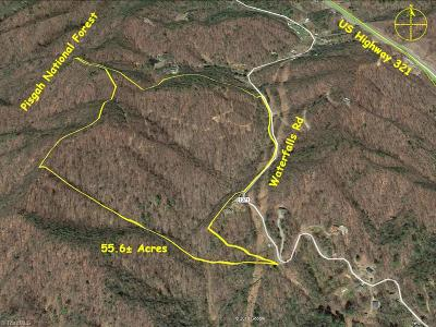 Caldwell County Residential Lots & Land For Sale: Waterfalls Road