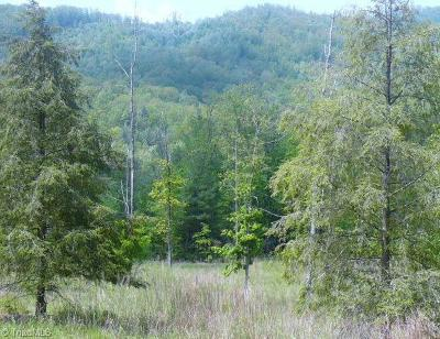 Wilkes County Residential Lots & Land For Sale: 00 Cove Gap Road