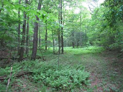 Wilkes County Residential Lots & Land For Sale: Off Big Ivy Road