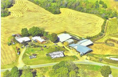 Davie County Residential Lots & Land For Sale: 226-3 Edwards Road