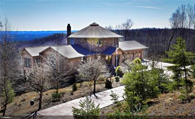 Wilkes County Single Family Home For Sale: 445 Idlewild Drive