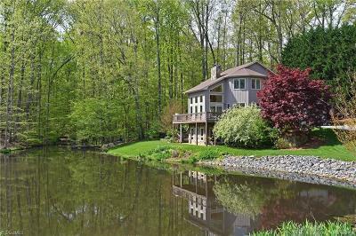 Winston Salem Single Family Home For Sale: 1620 Briar Lake Road
