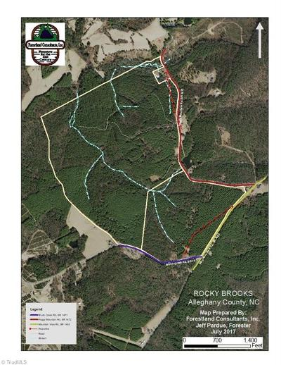 Alleghany County Residential Lots & Land For Sale: Mountain View Road