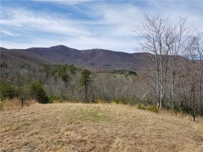 Surry County Residential Lots & Land For Sale: 192 Locust Run Lane