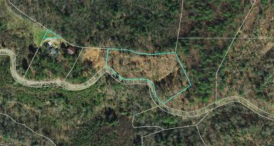 Wilkes County Residential Lots & Land For Sale: Hamby Mountain Road