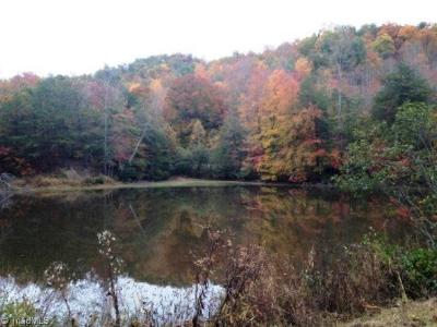 Wilkes County Residential Lots & Land For Sale: Arlie Myers Store Road