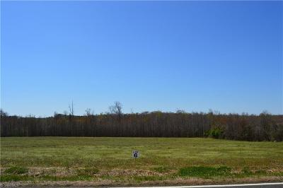 Browns Summit Residential Lots & Land For Sale: Lot # 6 Chrismon Road